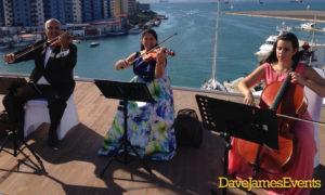 Musibodas Classical Musicians